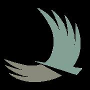 Charis Bank Logo